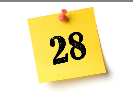 28 thành lập công ty giấy Hải Tiến